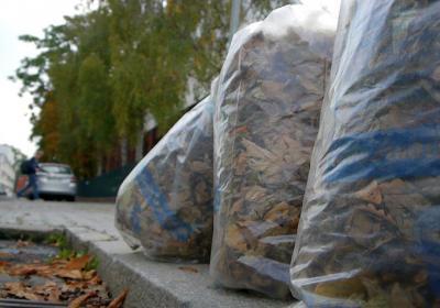 Abholung der Laubsäcke in Blankenese